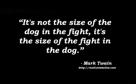 Size of fight in dog - motivate to live blog